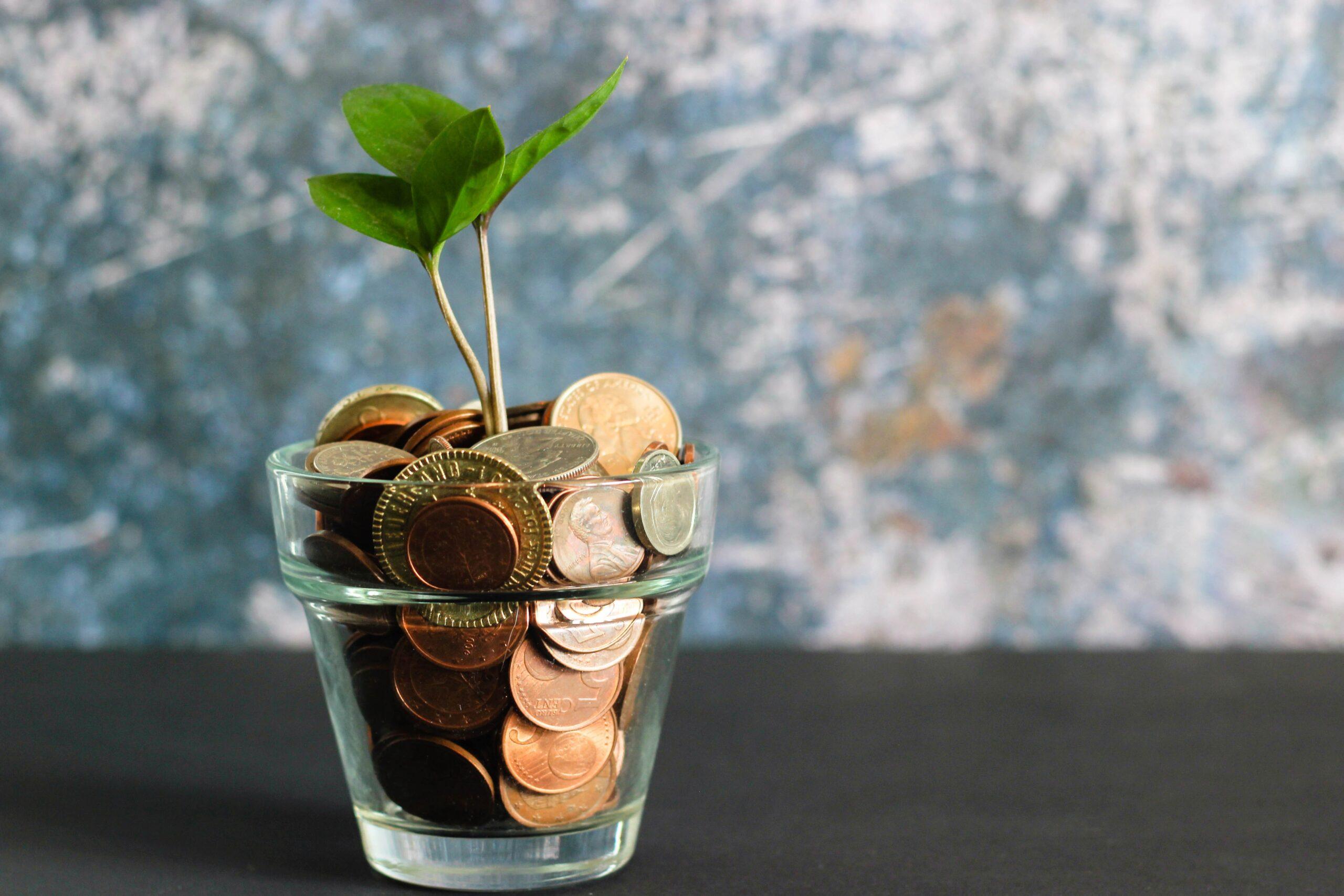 Jak osiągnąć wolność finansową?